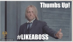 district2ftw:  Haymitch RULES!