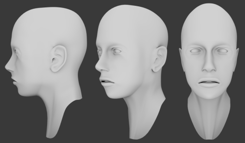 tadubay:  My first render of a head. Photo referenced. Not perfect obviously- the orbit/cheek-bones do need work, among many other features. Made in Blender.