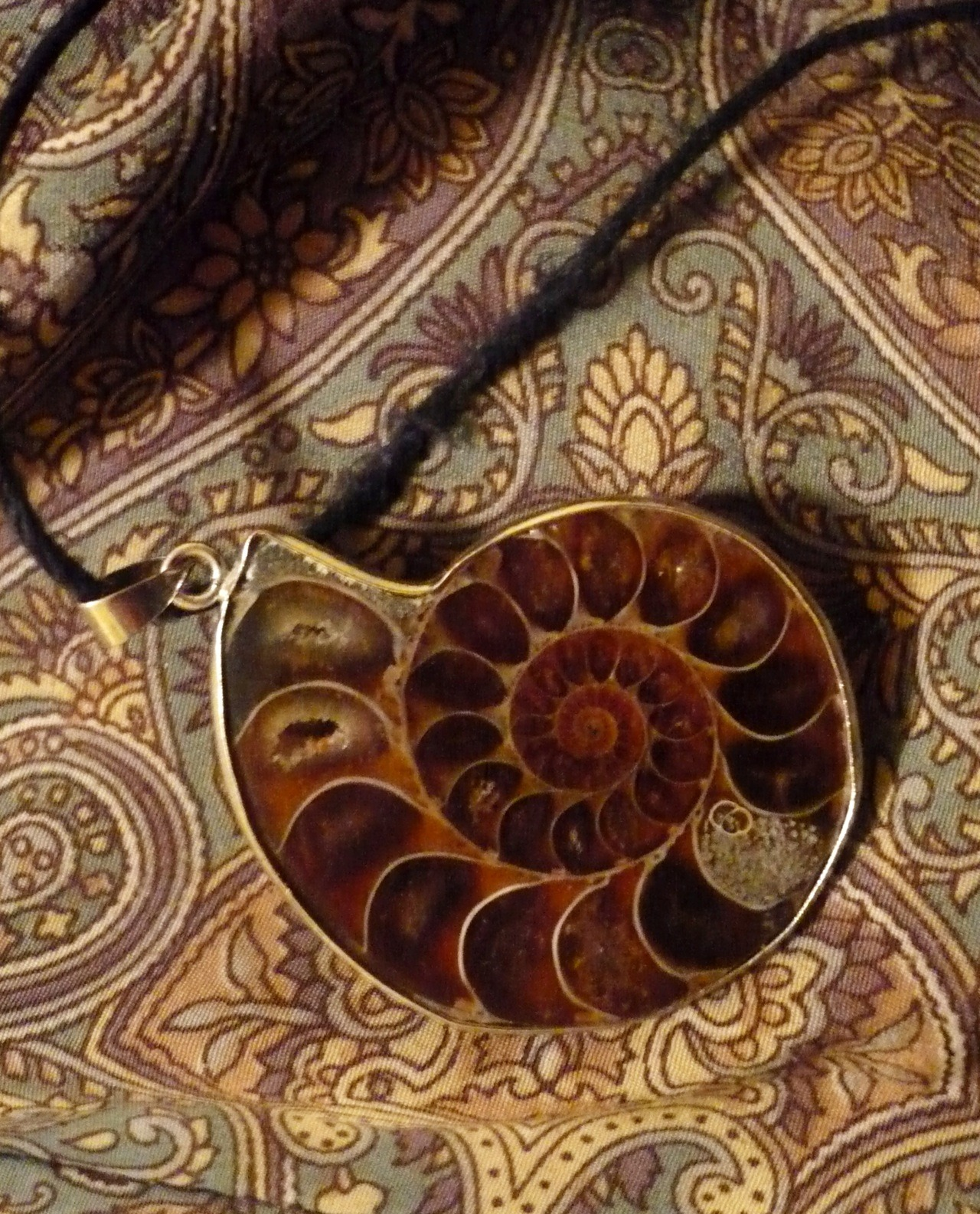 neohiburnicus:  new ammonite shell necklace I bought for myself.