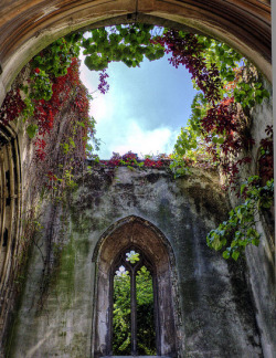 enchantedengland:    Originally built around 1100, St-Dunstan-in-the-East was a Church of England parish on St. Dunstan's hill, halfway between London Bridge and the Tower of London. The church was severely damaged during the Blitz, with only the tower, steeple, and north and south walls remaining.    The Londoners, however, rallied round and turned a wreckage into something wonderful. A lawn and trees were planted in the ruins and a fountain in the middle of the nave, and the site was made into a public garden with occasional open-air services. I would so definitely go to an open-air service here. This is just my opinion, but I feel much closer to God (or the spiritual, or whatever you wish to call it) within ruins and wilderness than amongst the confines of man-made buildings. (yorkshirestacked on flickr)