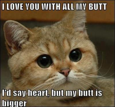 To my followers: I LOVE YOU WITH ALL MY BUTT!