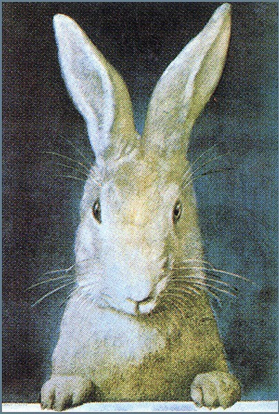 someforeignletters:  Vintage rabbit illustration
