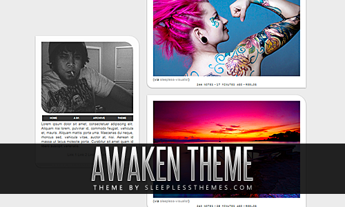 Awaken: Theme Code | Preview | InstallSingle column of posts & a sidebar. You can change all of the colors to whatever you want, add custom links, upload portrait photo & upload a custom background. This theme features an appearing/fading sidebar when you hover over it. You also have the option to turn infinite scroll on or off. Enjoy. For more themes click here.