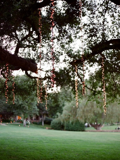 (via Wedding Ideas / lights in the trees. love)