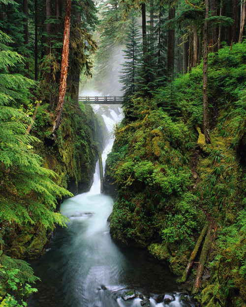 Sol Duc Falls, Olympic National Park, Washington.  photo via redsungiant