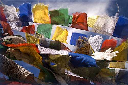 prayerflags:  Choklamsar, India