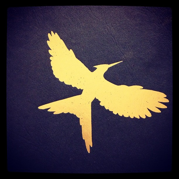 faithhope-andl0ve:  Mockingjay. (Taken with instagram)