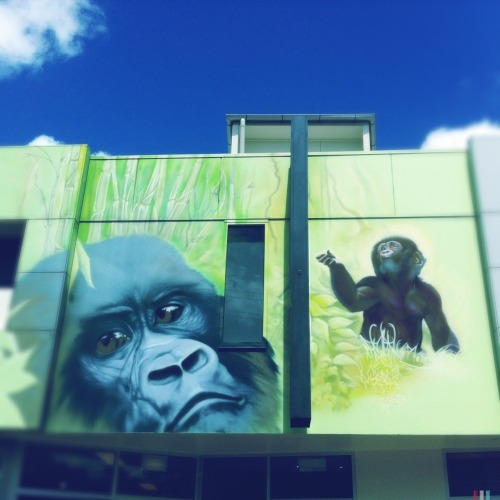glass-cumquat:  Monkey BusinessFacade Art on Fortitude Valley business