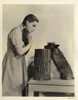 lowmorale:  Judy Garland in Wizard of Oz. 1939