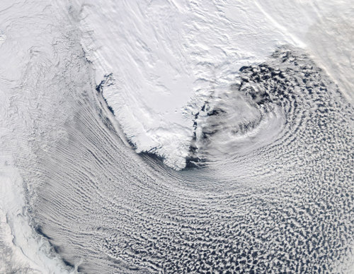 "discoverynews:  A Swirl of Clouds South of Greenland The Moderate Resolution Imaging Spectroradiometer (MODIS) instrument on NASA's Aqua satellite captured this natural-color image of long lines of clouds, known as ""streets"", wrapping around the southern tip of Greenland on March 6, 2012. Cloud streets are created by cylinders of air rotating parallel to the surface, forming clouds where the air rises and clear zones where the air falls back downwards. As the air cylinders move from above the sea ice in Baffin Bay out over the warmer southern water, clouds form along the rising air channels. Aqua is a NASA Earth Science satellite mission named for the large amount of information that the mission is collecting about the Earth's water cycle, including evaporation from the oceans, water vapor in the atmosphere, precipitation, soil moisture, sea and land ice, and snow cover. Image courtesy NASA/GSFC/Jeff Schmaltz/MODIS Land Rapid Response Team at NASA's Goddard Space Flight Center."