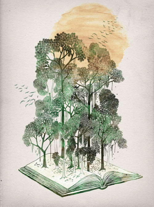 fer1972:  Jungle Book by David Fleck