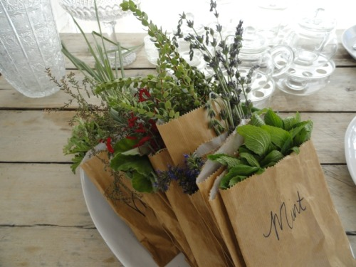 luellaloves:  I can't wait to have my own herb garden to harvest from a la mi madre.