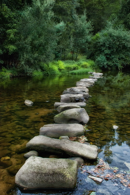 Stepping Stones by Manuel Lapierre