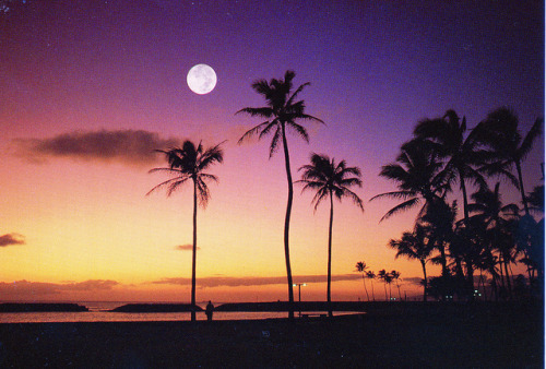 discoverhawaiitours:  Sunset in Oahu by Eddie Crutchley on Flickr. Pretty moonrise picture!  this picture needs two thing: me and hammock