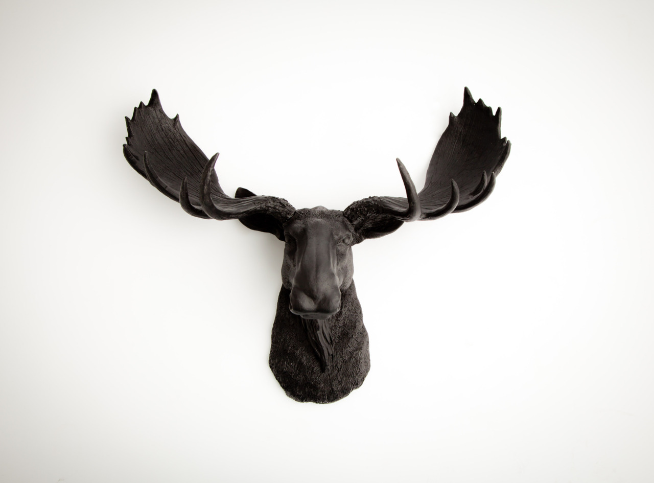 the leonard - black resin faux moose head
