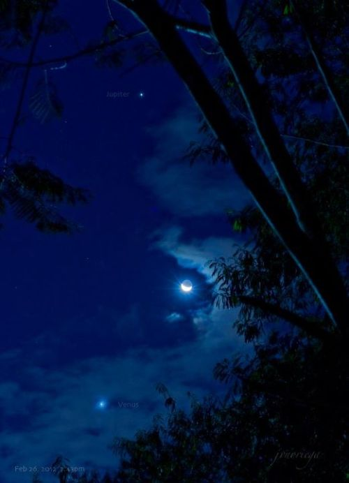 liveyourmflife:  Venus, you naughty girl…. …The Moon & Jupiter at the same time?? Go Girl. xo