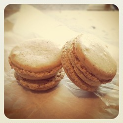 Earl Grey macarons @ tumblr