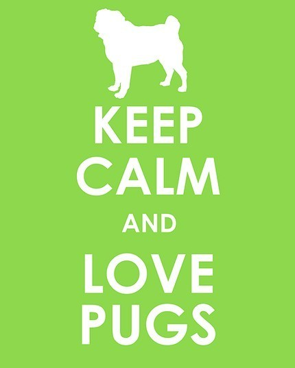 Keep Calm and Love Pugs!