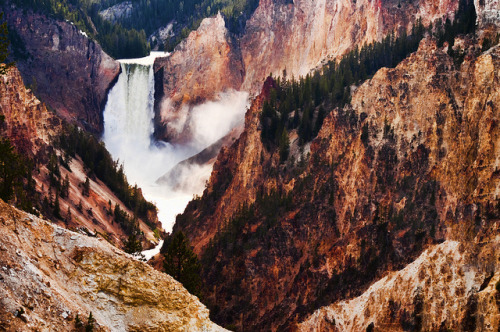 Lower Falls, Yellowstone National Park, Wyoming, USA. by Flash Parker on Flickr.
