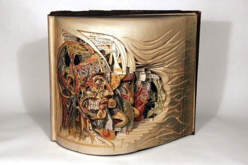 "Insanely Awesome Artist of the Day: Brian Dettmer ""Using knives, tweezers and surgical tools, Brian Dettmer carves one page at a time. Nothing inside the out-of-date encyclopedias, medical journals, illustration books, or dictionaries is relocated or implanted, only removed…"""