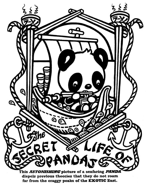 My t shirt design..Secret Life of Pandas series, by me, hoddleypoddley