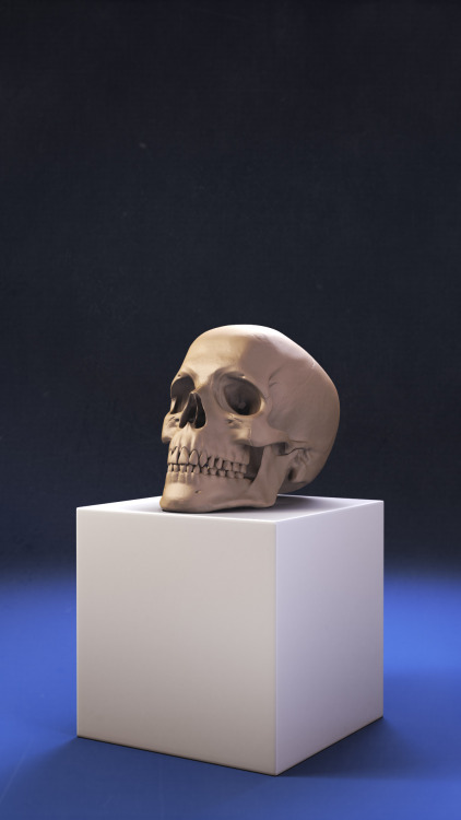 Spent the last few hours attempting some realistic lighting on my new skull model. Not sure how well I did, but I pretty much achived what I wanted. Maybe I should have thrown a dirty layer over the top of everything to hide the sharpness of the CG render. Ah well.  edit* I applied some film grain stuff, I think it looks better now.