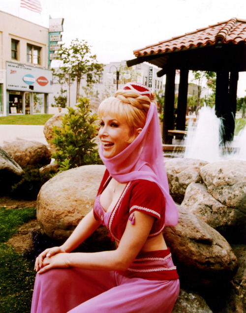Barbara Eden in I Dream of Jeannie (1960's)