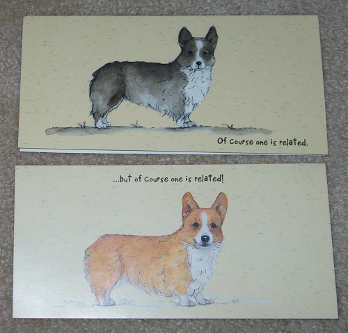 So G sends me cards every now and then she sent me the darker corgi when I had my beautiful Jackie. He is over the rainbow bridge now. I see his shadow around here still. He passed 5 years ago so missed. The light one looks like Princess to me. I am so glad I have her, she is fun furbaby. So its just a bit of tat. Taking a break need to get more writing done today.  OH son says you may want to see my new hair do. Do you?