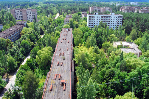 fobzdafish:  Pripyat - A city deserted after the 1986 Chernobyl accident has been taken over by the forest.