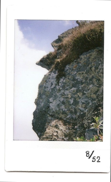 "8th instax! I took this one at the National Park ""El Ávila"" in Caracas. This is a face of rock! Really like it."