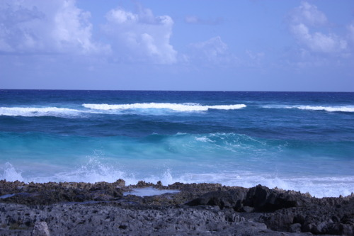 Cozumel Day 3: Rough Seas