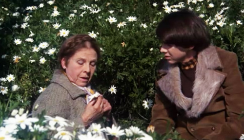 fashion-and-film:  Harold and Maude (1971)