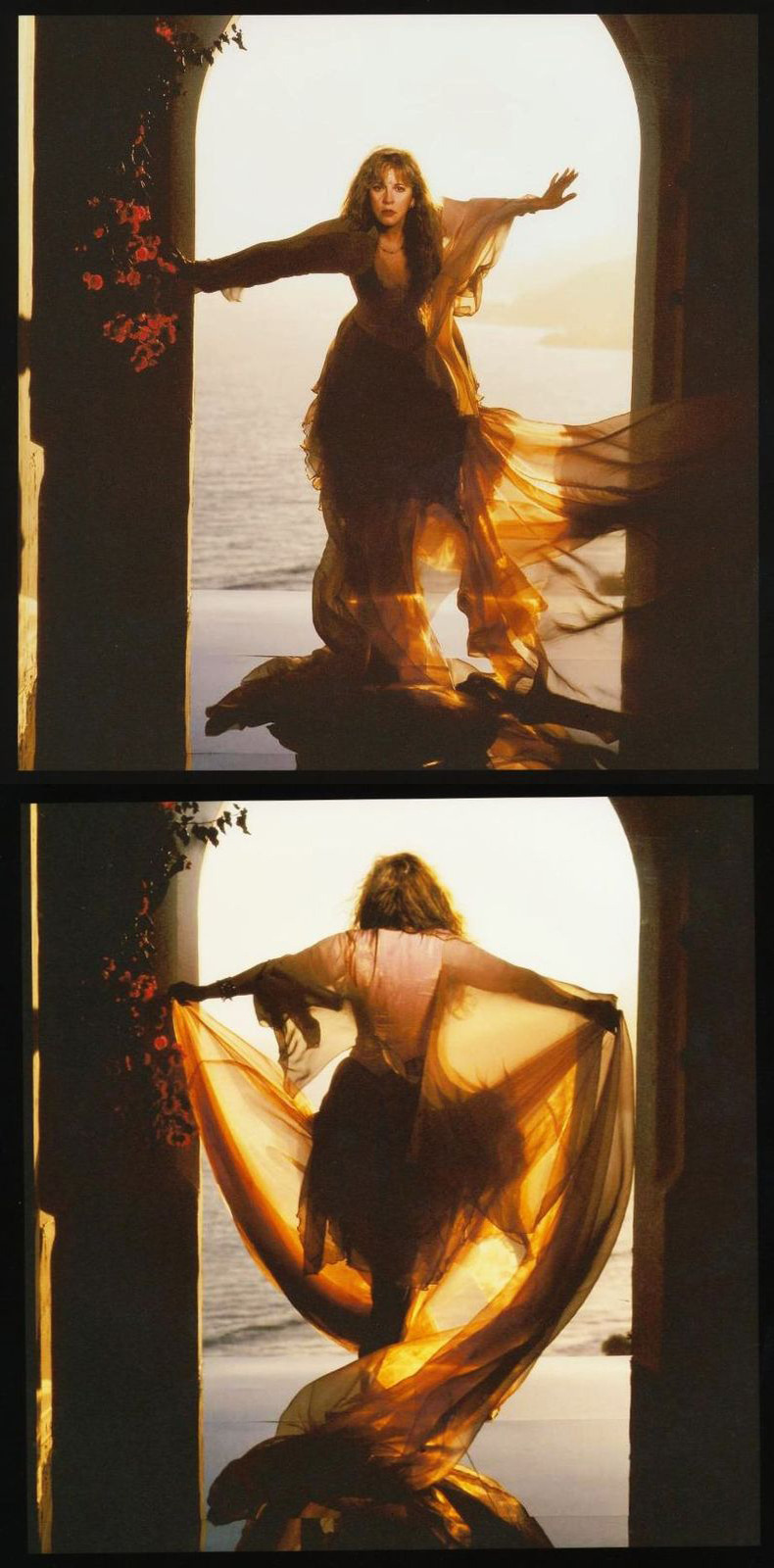 bohemea:  Stevie Nicks