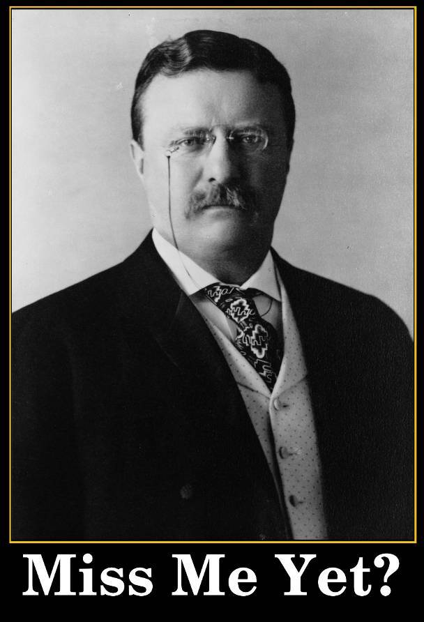 Teddy Roosevelt Miss Me Yet? Meme by laughzilla on March 13, 2012