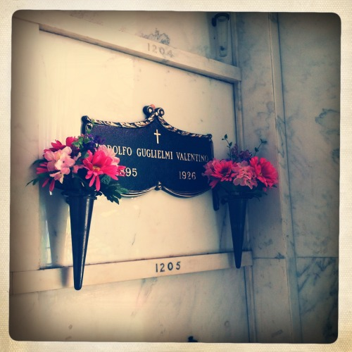 Valentino's grave, Hollywood Forever Cemetery - Los Angeles, California. I always forget how young he was, and handsome in that silent film way - somehow swarthy and florid and clean-cut simultaneously. I'm glad there are still flowers for him.
