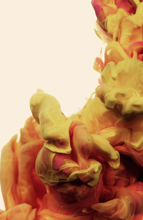 brain-food:  Series of water colors photographed by Alberto Seveso