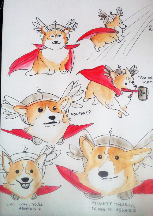 "goddessofasgard:  I drew a whole page of Thor as a corgi on my sketchbook. THORGI  OY, I couldn't fit the whole thing. MY BAD The one where he's holding Mjolnir says ""You are no match for THORGI"""