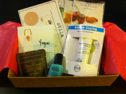 March Birchbox: herbal teas and aqua polish yesss!