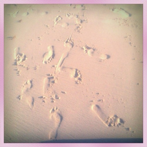Footprints in the sand…………….