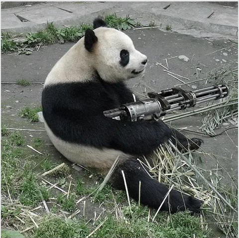 Power to the panda.