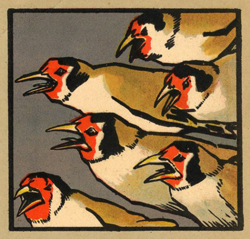 illustrated by Eugen Osswald (via The Animals' Ball - 50 Watts)