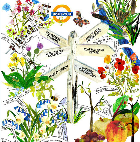 Illustration by Erica Read Friends of Homerton Station's guided walk around local wildflower & food-growing projects. Meet 11am, Sat 17 March 2012. Ends with lunch at 1pm at the Hackney Marshes Orchard.