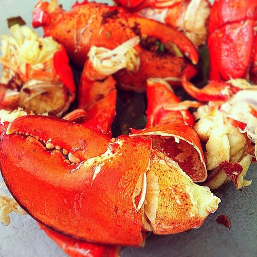 Lobster for One - #foodporn #food #foodgasm #foodpics #iphoneography #photography #photooftheday #iphone #sogood #yummy #lobster #seafood (Taken with instagram)