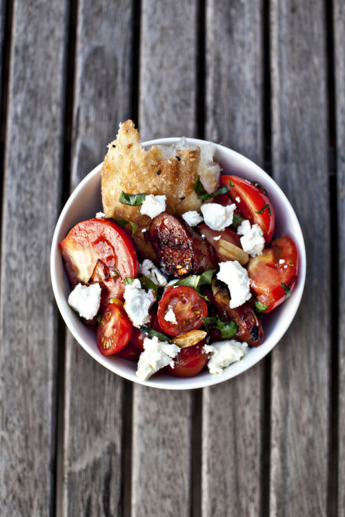 gastrogirl:  chorizo and tomato salad.