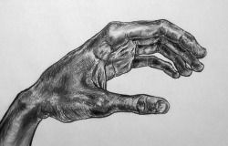 "Hand, March 15 36"" X 24"" vine charcoal on paper"