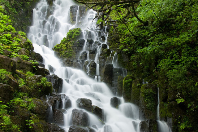不動滝 (Fudou Waterfall) The Fudou-taki in Aga, Niigata is a very nice and quiet tourist spot, especially during the Autumn. It is very dangerous to venture here, however, during the rainy season.