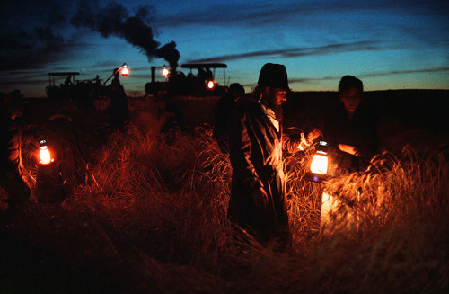 gadgetry:  sylvysparrow:  fnipoli:  Days of heaven (Terrence Malick, 1978)  the most beautifully shot film ever, in my opinion.  This is my favorite Malick movie.  Reblogging as a reminder to watch Days of Heaven.