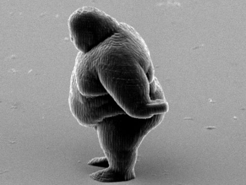 discoverynews:  Nano-Scale Printer Makes Quirky 3D ImagesA new record-breaking 3D printer works by focusing a laser beam onto liquid resin. Here are some nano-scale objects it printed. keep reading