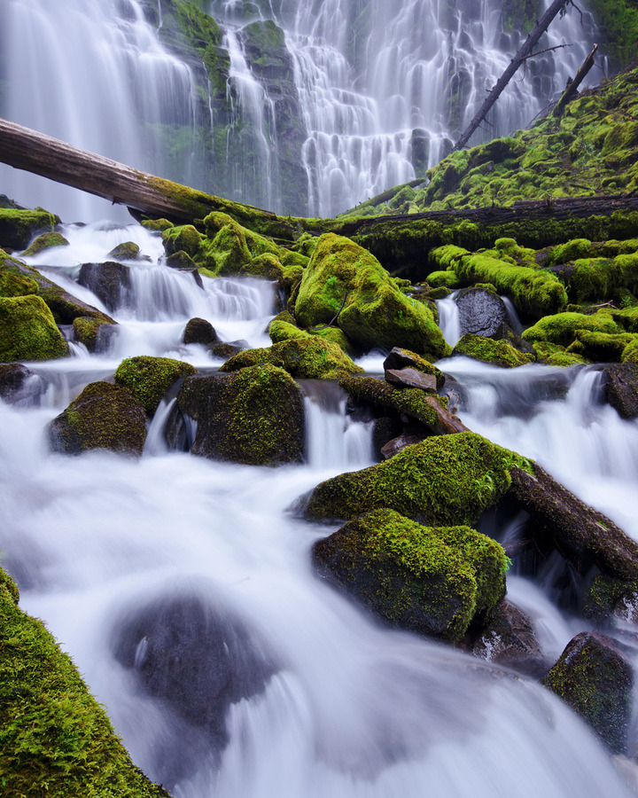 Proxy Falls, Cascade Mountains, Oregon   image by Jeff Swanson