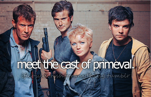 If I could wish for anything… I would wish I could meet the cast of Primeval [and thank them for making me smile when I needed it the most.]